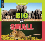 Big and Small (Opposites) Cover Image