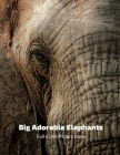 Big Adorable Elephant Full-Color Picture Book: Elephant Photography Book- Wildlife Animal Nature Cover Image
