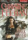 Dark Slayer Cover Image