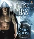 Dark Ghost (Carpathian Novel, A #28) Cover Image