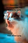 PURRRRRRFECT Cat photography Cover Image