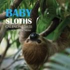 Baby Sloths Calendar 2020: 16 Month Calendar Cover Image