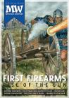 The Rise of the Gun Cover Image