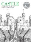 Castle Cover Image