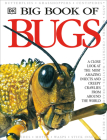 Big Book of Bugs Cover Image