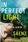 In Perfect Light: A Novel Cover Image