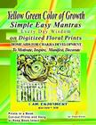 Yellow Green Color of Growth Simple Easy Mantras Every Day Wisdom on Digitized Floral Prints Home Aids for Chakra Development to Motivate, Inspire, Ma Cover Image
