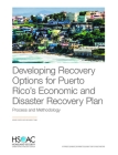 Developing Recovery Options for Puerto Rico's Economic and Disaster Recovery Plan: Process and Methodology Cover Image