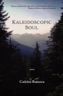 Kaleidoscopic Soul: poems Cover Image