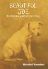 Beautiful Joe Cover Image