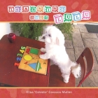 Learning with Lulu Cover Image