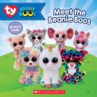 Meet the Beanie Boos (Beanie Boos) Cover Image