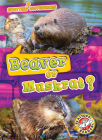 Beaver or Muskrat? Cover Image