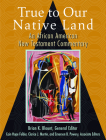 True to Our Native Land: An African American New Testament Commentary Cover Image