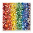 Rainbow Marbles 500 Piece Puzzle Cover Image