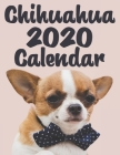 Chihuahua Calendar 2020 - Dogs & Puppies - 12 Month Calendar: Monthly Wall or Desk Calendar for Chihuahua Breed Fans - Funny Quotes & Pictures Cover Image
