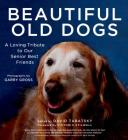 Beautiful Old Dogs: A Loving Tribute to Our Senior Best Friends Cover Image