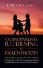 Grandparents Returning to Parenthood: A Parent's Recovery Story from Pain to Peace: a Supportive Guide for Grandparents Raising Grandchildren and Pare Cover Image