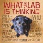 What Your Lab Is Thinking Cover Image