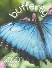 Butterfly 2020 Calendar Cover Image