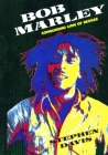 Bob Marley: Conquering Lion of Reggae Cover Image