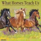 What Horses Teach Us 2020 Wall Calendar Cover Image
