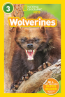 National Geographic Readers: Wolverines (L3) Cover Image