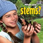 What Are Stems? (Plants Close-Up #4) Cover Image