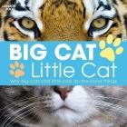 Big Cat, Little Cat Cover Image
