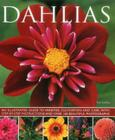 Dahlias Cover Image