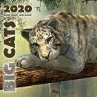 Big Cats 2020 Mini Wall Calendar Cover Image