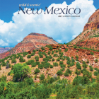 New Mexico Wild & Scenic 2021 Square Cover Image