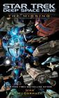 Star Trek: Deep Space Nine: The Missing Cover Image