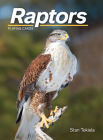 Raptors Playing Cards (Nature's Wild Cards) Cover Image