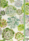 Succulent Garden Journal Cover Image