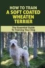 How To Train A Soft Coated Wheaten Terrier: The Essential Guide To Training Your Dog: Soft Coated Wheaten Terrier Training Cover Image