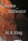 The Caverns of Stillwater Cover Image