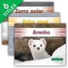 Animales del Ártico (Arctic Animals) (Set) Cover Image