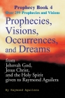 Prophecies, Visions, Occurrences, and Dreams: From Jehovah God, Jesus Christ, and the Holy Spirit Given to Raymond Aguilera Book 4 Cover Image
