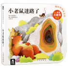 Wonderful Cave Book 4 - Little Mouse Is Lost Cover Image