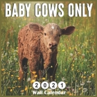 Baby Cows Only 2021 wall calendars: Monthly Square Wall Calendar 18 Months Cover Image