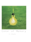 Color of Memory Cover Image