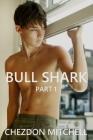 Bull Shark Part 1: A Gay Romance Cover Image