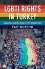 Lgbti Rights in Turkey: Sexuality and the State in the Middle East Cover Image