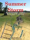 Summer Storm: Regimental Wargame Scenarios For the Battle of Gettysburg Cover Image