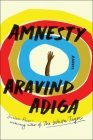 Amnesty: A Novel Cover Image