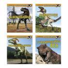 Little Paleontologist Cover Image