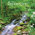 Tennessee Wild & Scenic 2021 Square Cover Image