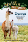 Llamas and the Andes: A nonfiction companion to Magic Tree House #34: Late Lunch with Llamas (Magic Tree House (R) Fact Tracker #43) Cover Image