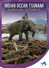 Indian Ocean Tsunami Survival Stories (Natural Disaster True Survival Stories) Cover Image